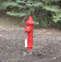 The Municipal District of Wainwright installed above-ground shut-off valves along main distribution lines.
