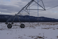 The new wastewater spray irrigation system in Cranbrook