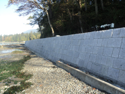 The new seawall in Vancouver's Stanley Park