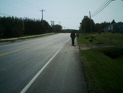 Dalton Avenue in Tignish