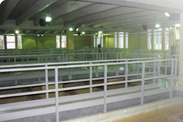 Woodward Avenue Wastewater Treatment Plant