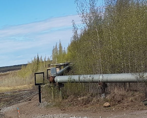 This shows a utilidor replaced in Inuvik Northwest Territories. The steel tubes with adjustable bracing composing the utilidor are placed on structures, through the plants, avoiding contact with the ground. Next to it, you can see two panels protecting the points where the utilidor changes direction. There is also blue, red and orange marker placed across from the utilidor in the grass.