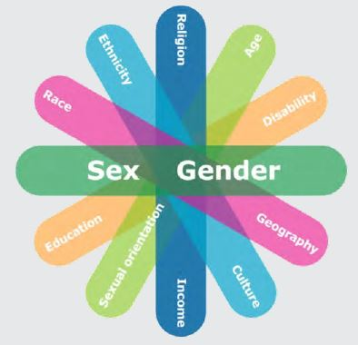 Gender-Based Analysis Plus